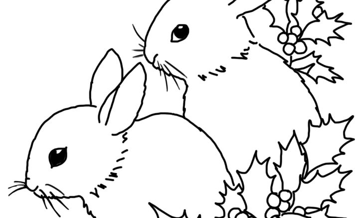 Bunnies and holy for christmas motive widescreen coloring pages animals of printable computer hd