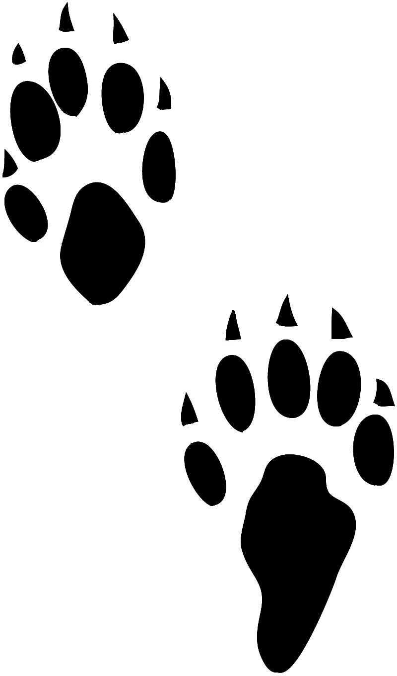 hight resolution of paw prints clipart marten