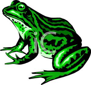 A Sitting Green Frog  Clipart