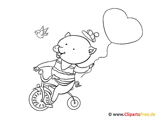 Bilder zum Nachmalen  Schwein auf dem Fahrrad