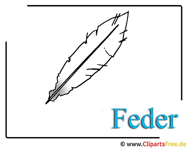 Feder Bild Clipart free