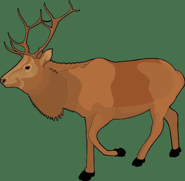 reindeer clipart - suggest