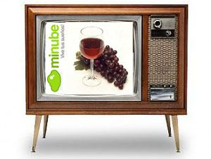 tv-300x276-copia