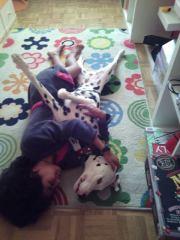 dalmata tumbado junto a su dueña