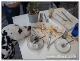 fin desayuno builder breakfast