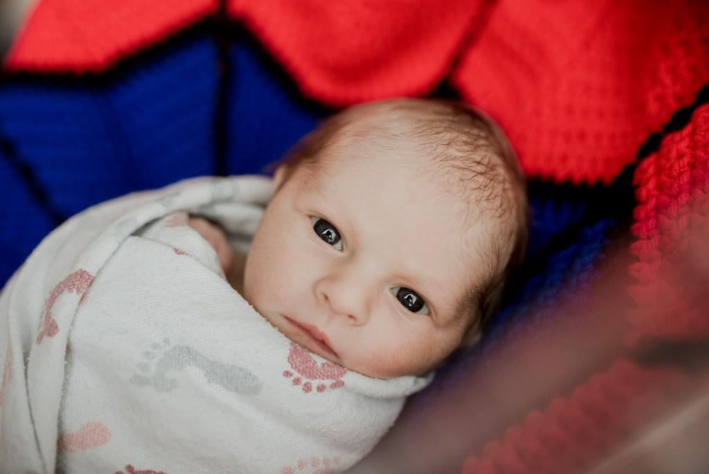 Dallas Fresh 48 Newborn Photographer CLJ Photography