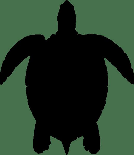 Turtle Black Silhouette Clip Art at Clkercom vector