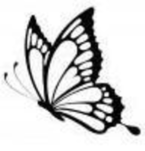 butterfly design free
