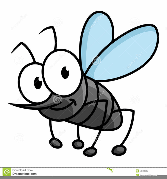 royalty free mosquito clipart