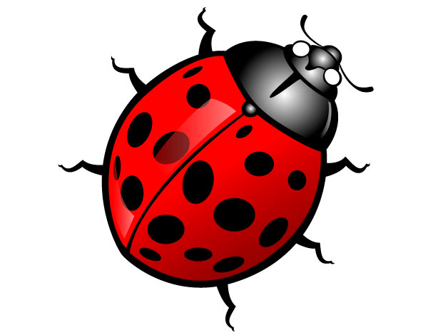 free cute insect clipart