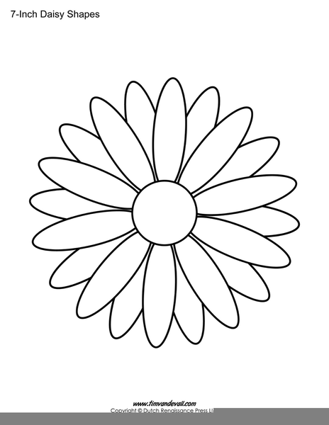 Daisy Outline Drawing Free Images At Vector