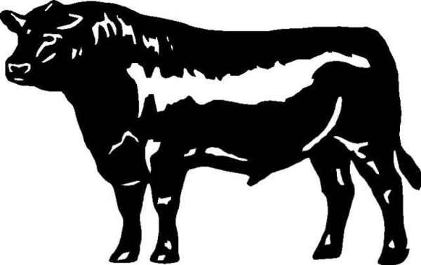 Black White Clip Angus And Bull Art