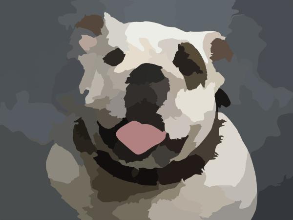 English Bulldog X Clip Art At Vector Clip Art