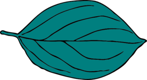 teal oval leaf clip art