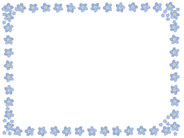 Forget Me Not Frame  Free Images at Clkercom  vector