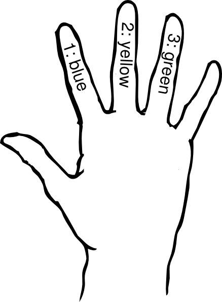 Medical Term For Fingers Digits