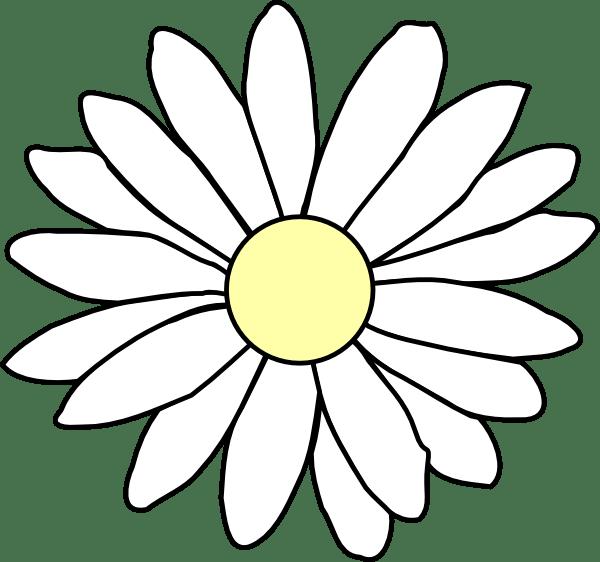 daisy clip art - vector