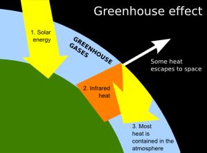 Greenhouse Clip Art at Clker  vector clip art online