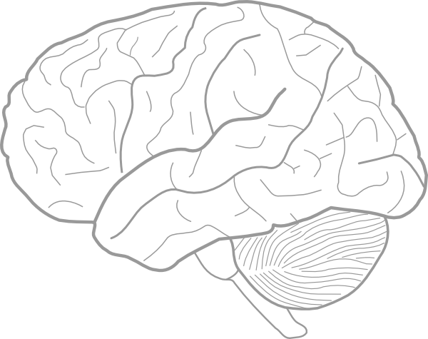 easy brain diagram