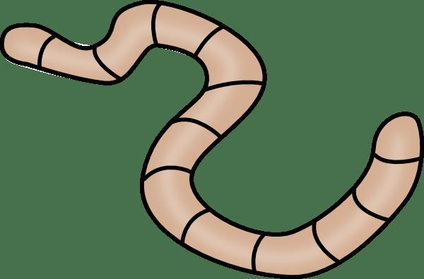 brown earth worm clip art