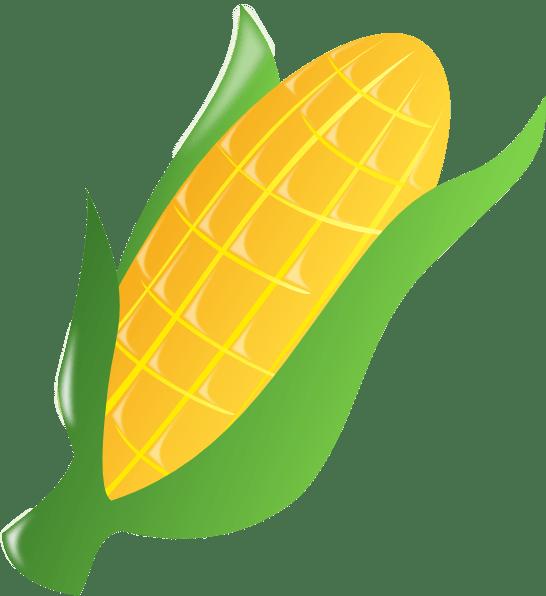 corn clip art