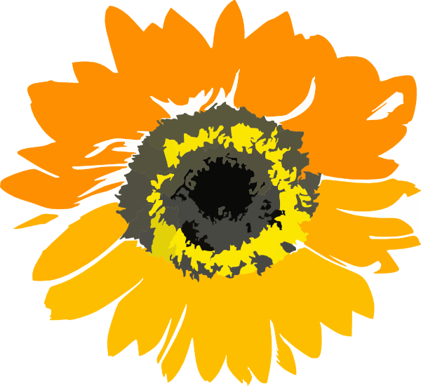 orange sunflower clip art