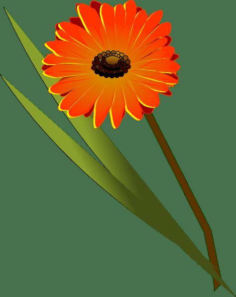Gerbera Clip Art at Clkercom  vector clip art online