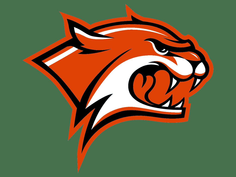 Wildcats Cut Orange  Free Images at Clkercom  vector