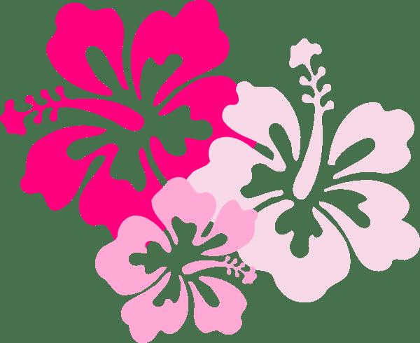 hibiscus pink clip art