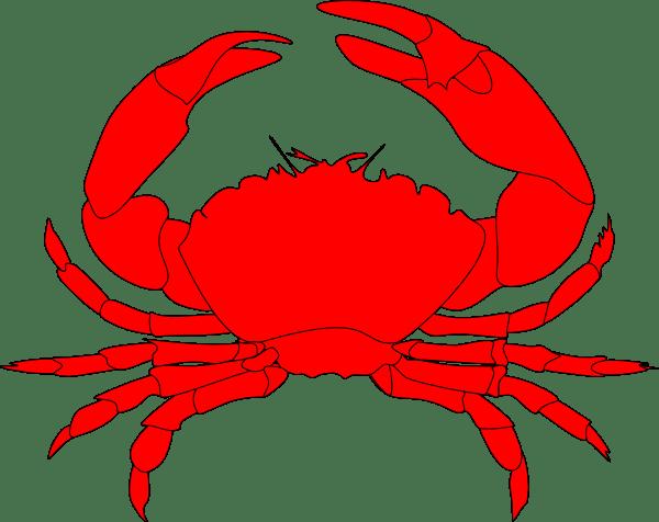 Red Crab Clip Art at Clkercom  vector clip art online