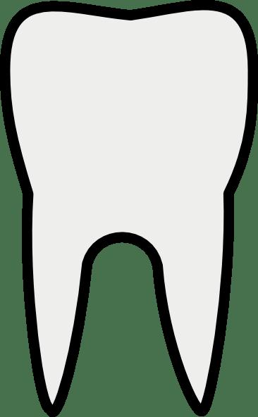 Sallee Tooth Clip Art at Clkercom  vector clip art
