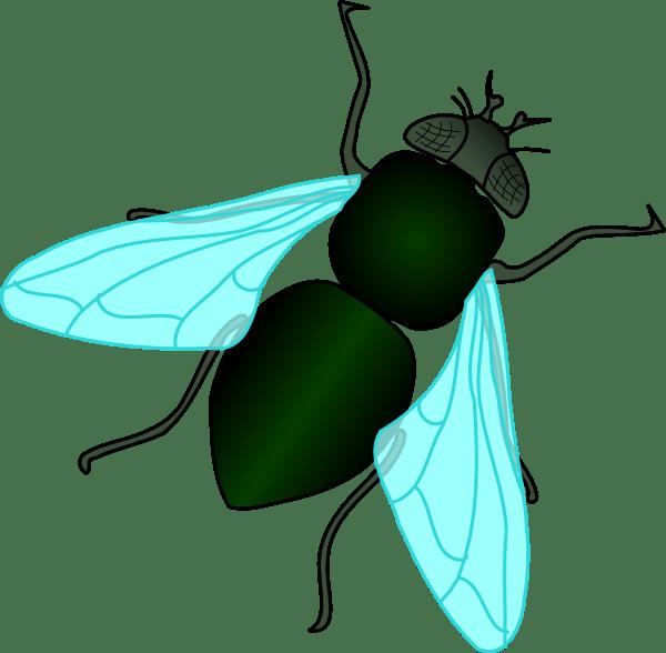 green house fly clip art