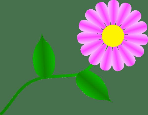 daisy fuchsia clip art