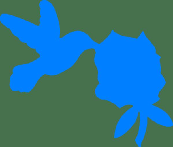 blue hummingbird and bush clip
