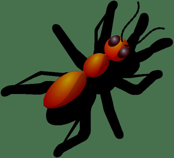 ant clip art - vector