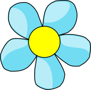 turquoise blue flower with