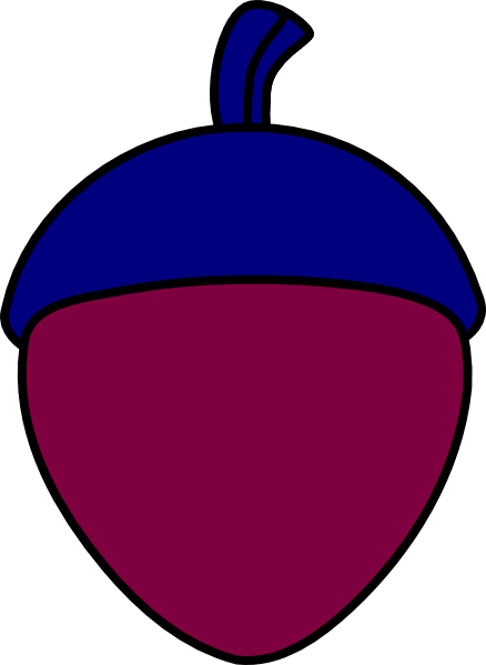 burgundy red acorn with midnight