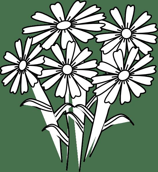 Httpsedu Apps Herokuapp Compostfive Petal Purple Flowers Names