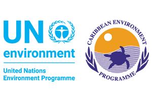 UN Environment CEP