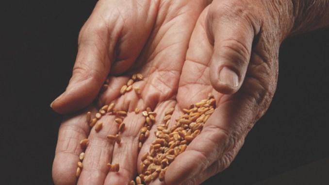Recensământul agricol de Probă debutează la Călărași. FOTO INSSE