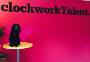 Valentino, a black gun-dog Spaniel, sat in front of a pink wall with clockworkTalent branding