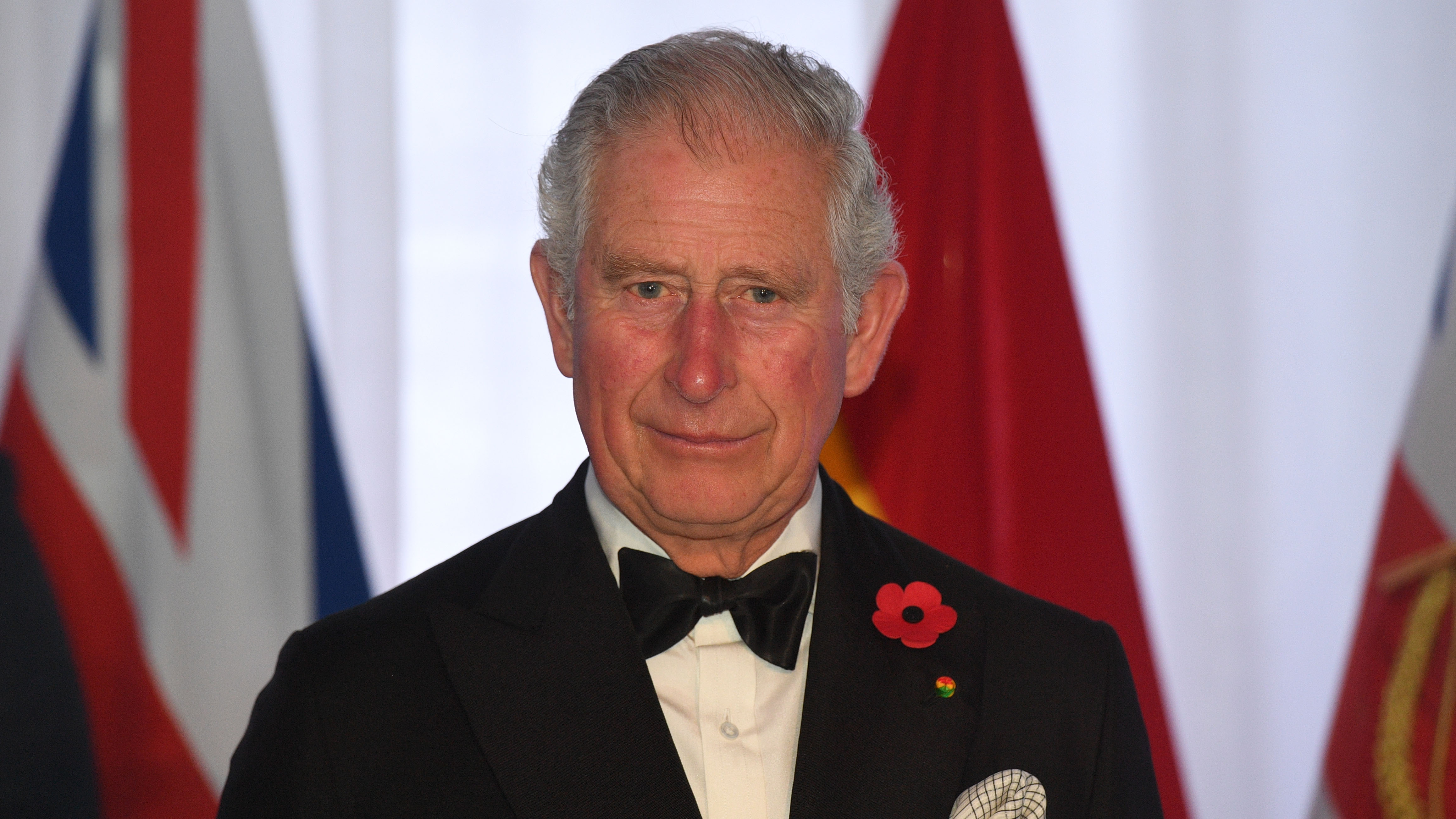 Prince Charles Will Keep His Political Views To Himself