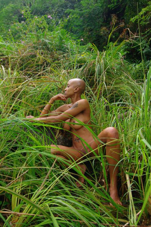 kwentona in grass