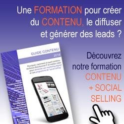 Guide-Contenu-Marketing