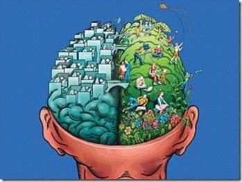 Cognitive Dissonance Brain