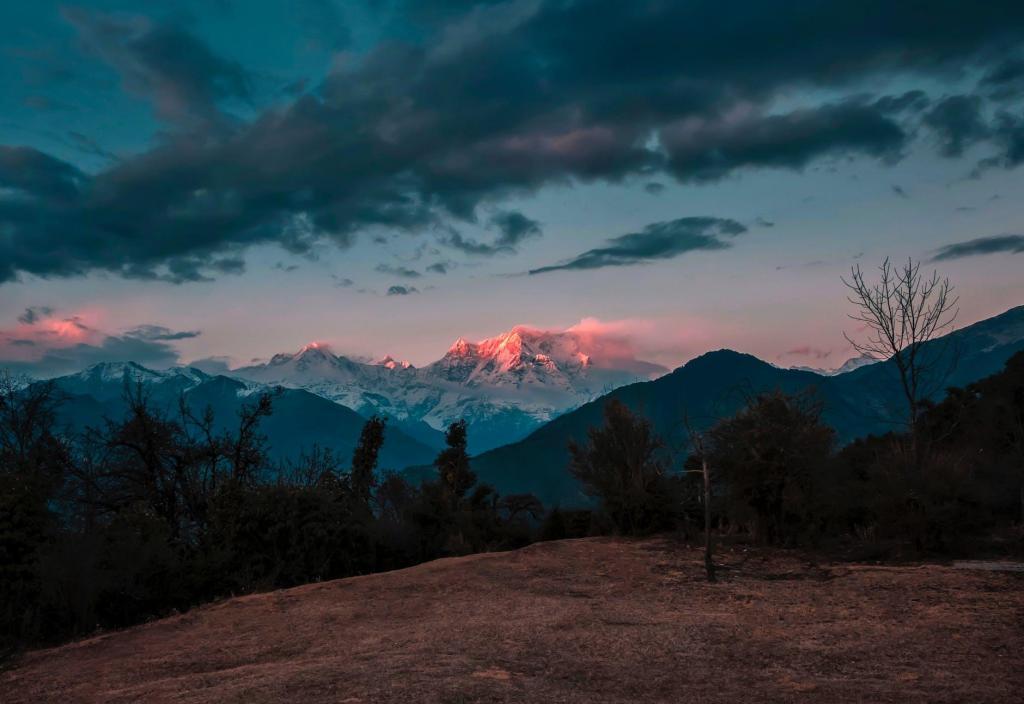photo of trees across mountains