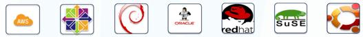 Figura 1 - Distribuzioni Linux supportate in OMS