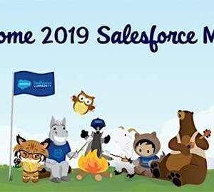 New Salesforce MVPs