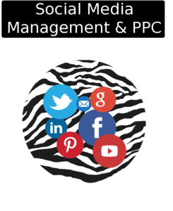 cloudy zebra social media management and ppc icon