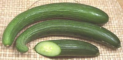 Image result for Hothouse (English) cucumbers